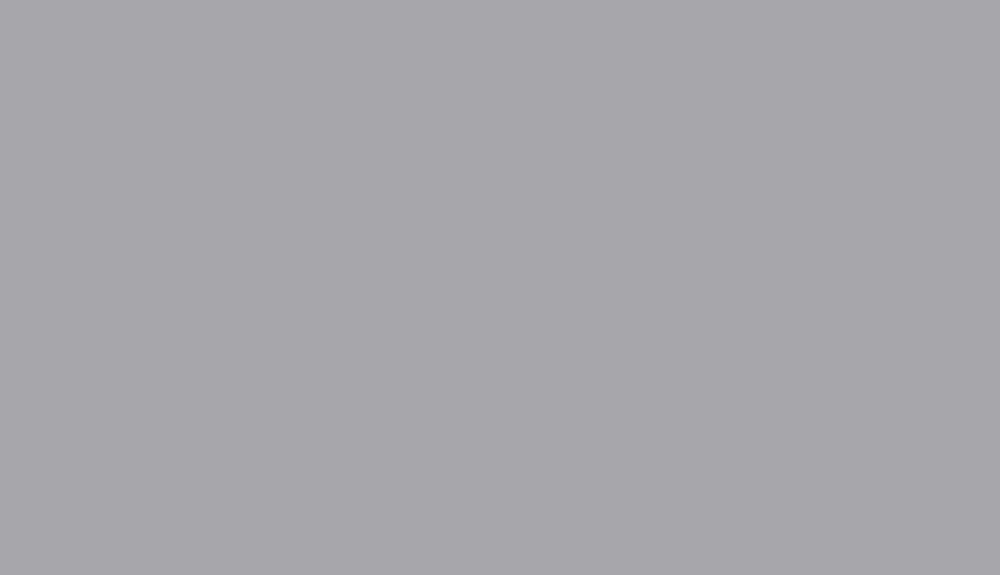 E3 - vetro LACCATO - 7004_GRIGIO SEGNALE