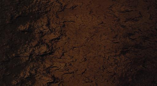 bronzo antico